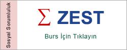 zest_banner_250x100_zest_banner_001
